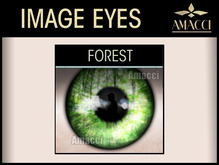 Amacci / InSight ~ Forest Eyes