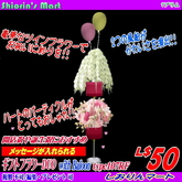 GIFT FLOWER DUO with BALOON type107RF+