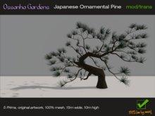 Japanese Ornamental Pine mesh m/t