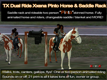 TX Dual Ride Xxena Pinto Horse and Saddle Low Introductory Price!
