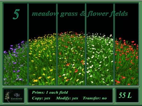 5 meadow grass & flower fields