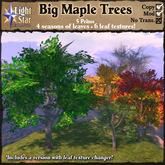 *LightStar- Big Maple Trees