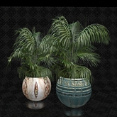 3 Prim Potted Palm Plant in (Teal)