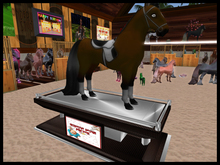 :::IDJ::: Deluxe Single Horse Display Stand