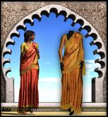 Bilo- Chandramukhi Sari (Copper) MESH