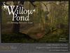 Skye willow pond 4