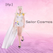[Ity.] Sailor Cosmos