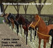 Champion bridles, 7 colours, copy + mod., Freebie