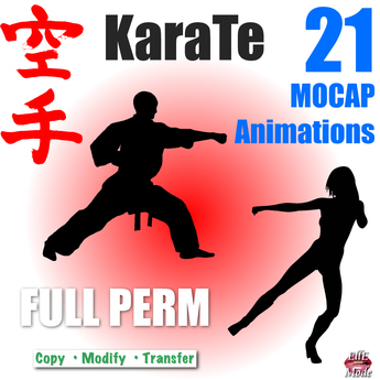 !!! PROMO !!!  KARATE MOCAP ANIMATIONS * 21 FULL PERMISSION for Builders/Resellers * 50% DISCOUNT - LIMITED TIME