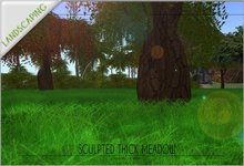 Sculpted square dense meadow TRANSFER version