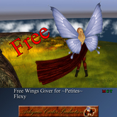 @ AC Boite ~petites~ Mesh Avatar wings giver