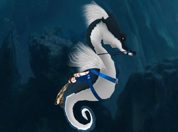 Karikko DIVER Saddled Seahorse 1.3 (BLUE) w netting