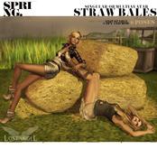 "[LA] LOSTANGEL ""SPRING"" Straw Bales Multipose (Singular Avie)"