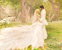 D.Luxx Poses - The Wedding Collection - Everlasting - Couples Wedding/Romantic Pose