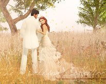 D.Luxx Poses - The Wedding Collection - To Have To Hold - Couples Wedding/Romantic Pose
