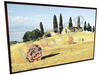 Picture - Toscana Wheat