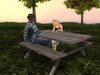 Dutchie mesh picnic table: 4 x 8 animations