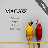 [TomatoPark] Macaw Pack