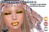 .:Glamorize:. Champagne Combos 2 - 3 Tattoo Makeup Combos