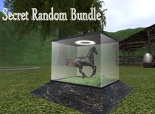 Secret Random Bundle