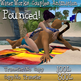 WaterWorks Couples Animation -  Pounced - Transfer