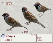 *~M`n B~* Bird 1