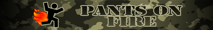 Pants on fire banner 1