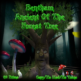 Bentham Ancient Of The Forest Tree