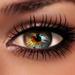 Eyes+Lashes - Oasis - REDGRAVE