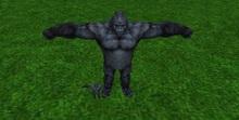 ARM - A Rigged Mesh - Silverback Gorillas!