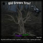 :Z.S: Old Crows Tree