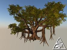 banyan tree 18 prims M/T