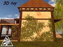 creeping ivy 3x shape C/M
