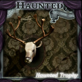 Haunted trophy