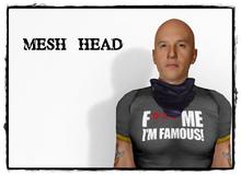 Mesh head 4