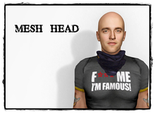Mesh head 5