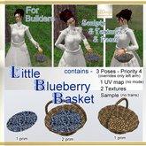 EBDesign - Little Blueberry Basket & holding Poses
