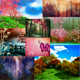 Magical Fantasy Nature photo background textures