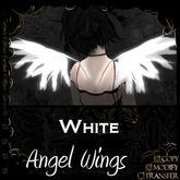=^.^= Curious Kitties - Angel Wings - White