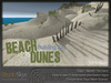 Skye beach dunes 3