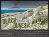Skye beach dunes 4