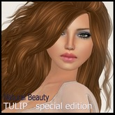 Natural Beauty-Tulip-special edition 3