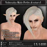 < Yabusaka > Male Petite Mesh Avatar 2