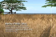 [ Organica ] Barley Fields (dry)