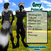 Furry Polecat - Grey