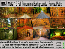 ..::RO!ACT::..DESIGNS 12 Fall Panorama Photography Backgrounds-Forest Paths