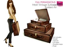 Full Perm Mesh Vintage Suitcase Set