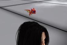 AMU - Pet Dragon!