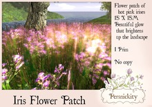 Persnickity Iris Patch