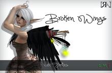 [RA] Broken Wings